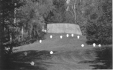 Wojenny cmentarz na Golmie