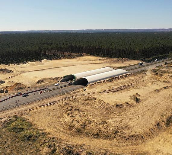 Otworzyliśmy oferty w przetargu na dokończenie budowy dużego przejścia dla zwierząt na A6 Szczecin Dąbie -Rzęśnica