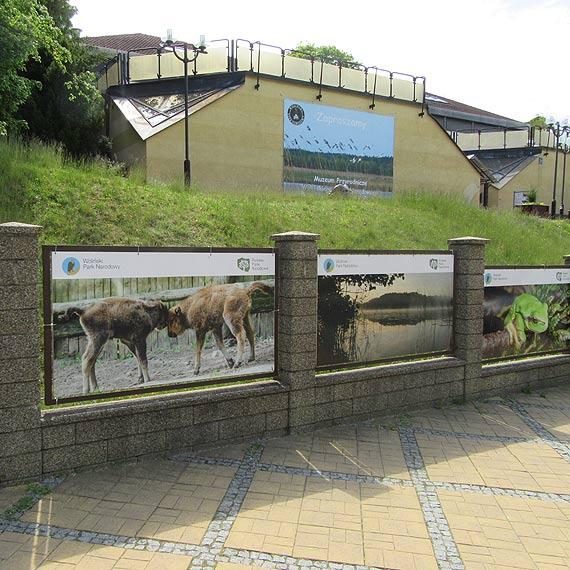 Muzeum Przyrodnicze Wolińskiego Parku Narodowego jest już czynne!